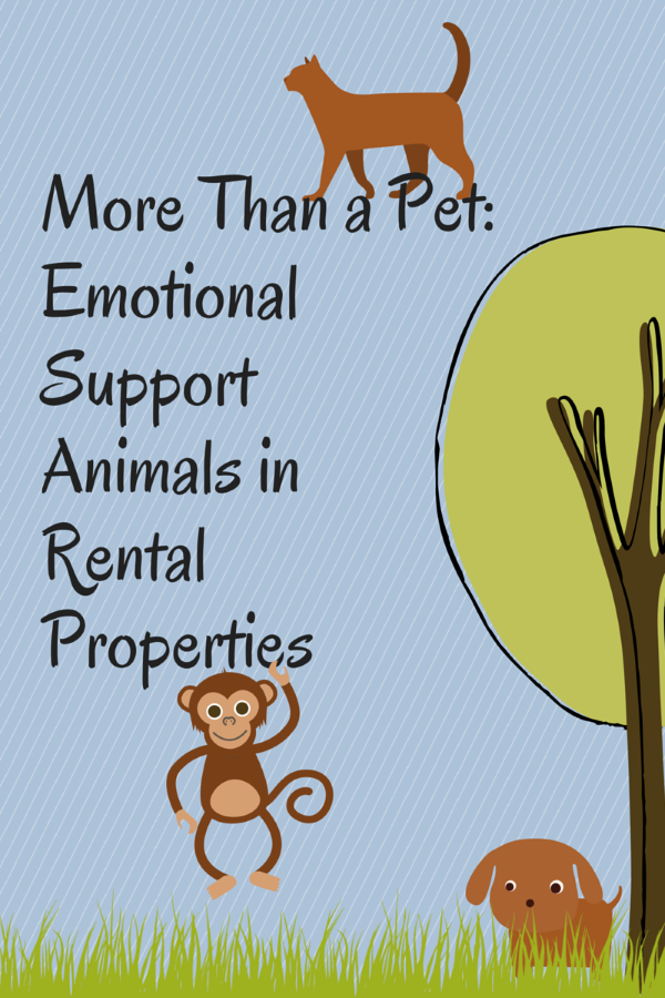 Pedigree Dogs More Than Pet Emotional Support Animals In Rental Properties Pawsxcom More Than Pet Emotional Support Animals In Rental Properties
