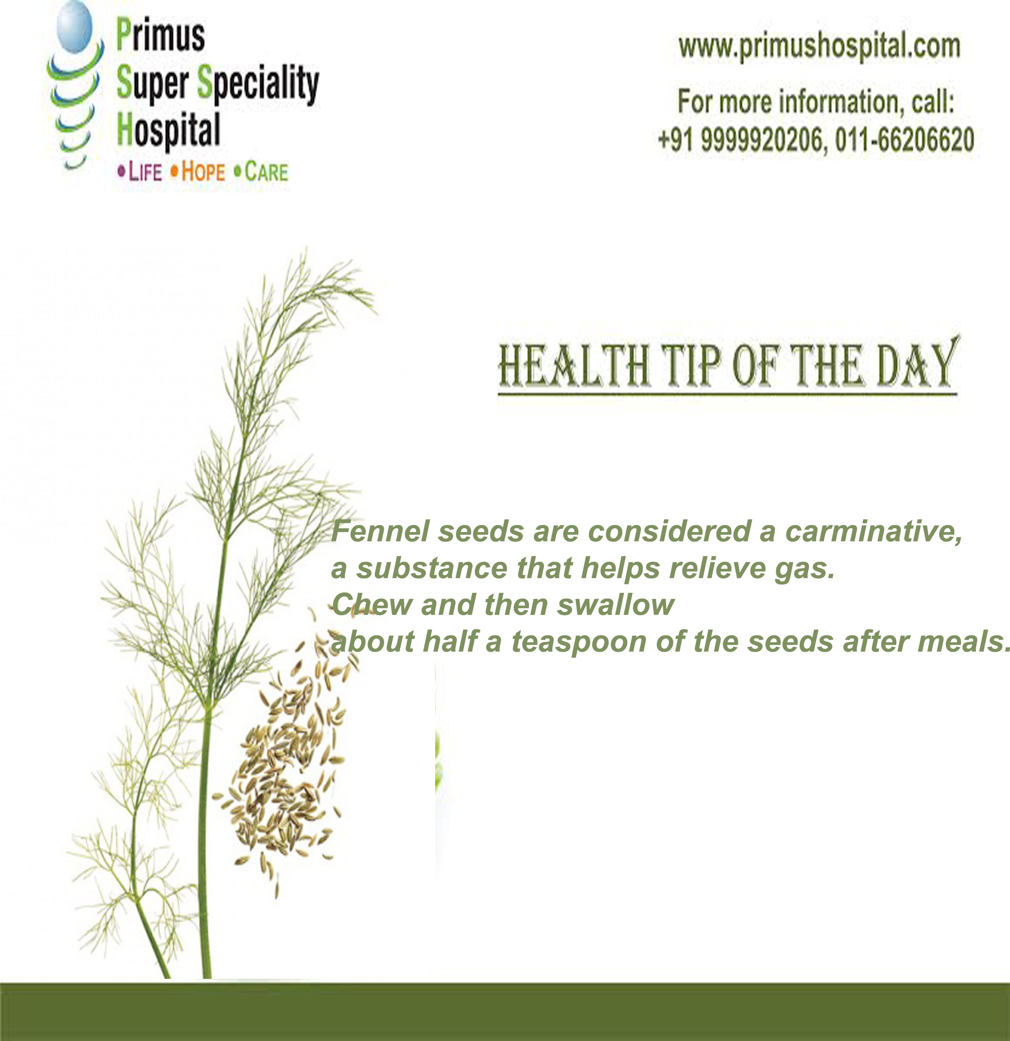 Chew Some Fennel Seeds Fennel Seeds Are Considered A Carminative