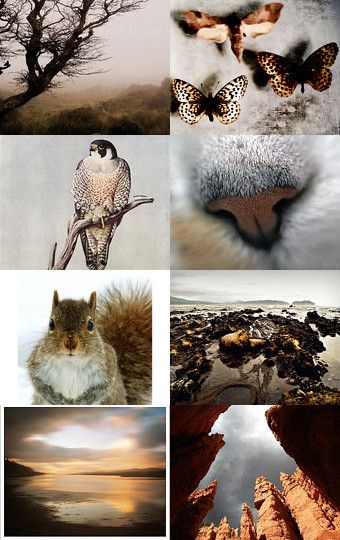 """#ArtPassionBijoux by Sara, photographic #Etsy #treasury: """"What a wonderdful world part VI"""" --Pinned with TreasuryPin.com"""