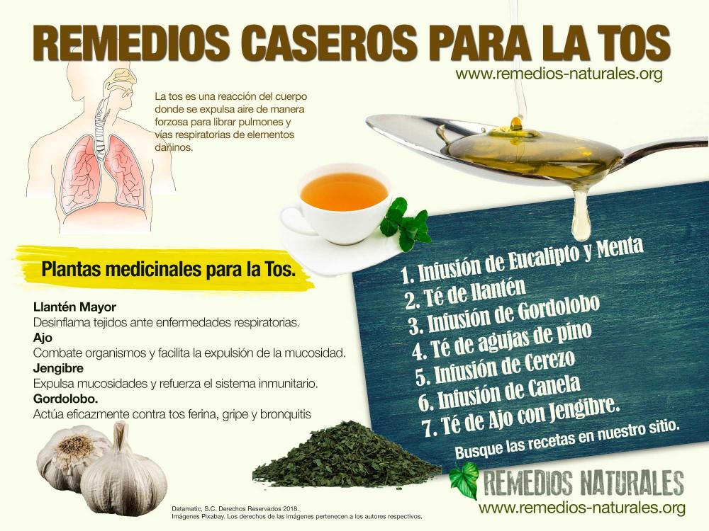 Infografia Remedios Caseros Google Search