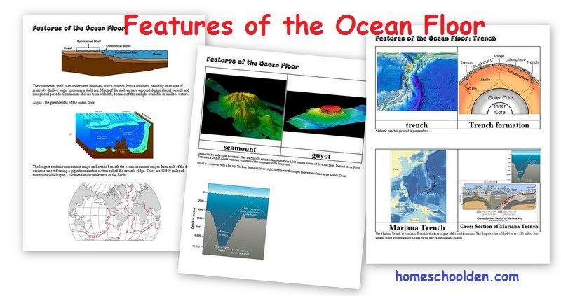 Features of the Ocean Floor Projects Ocean activities