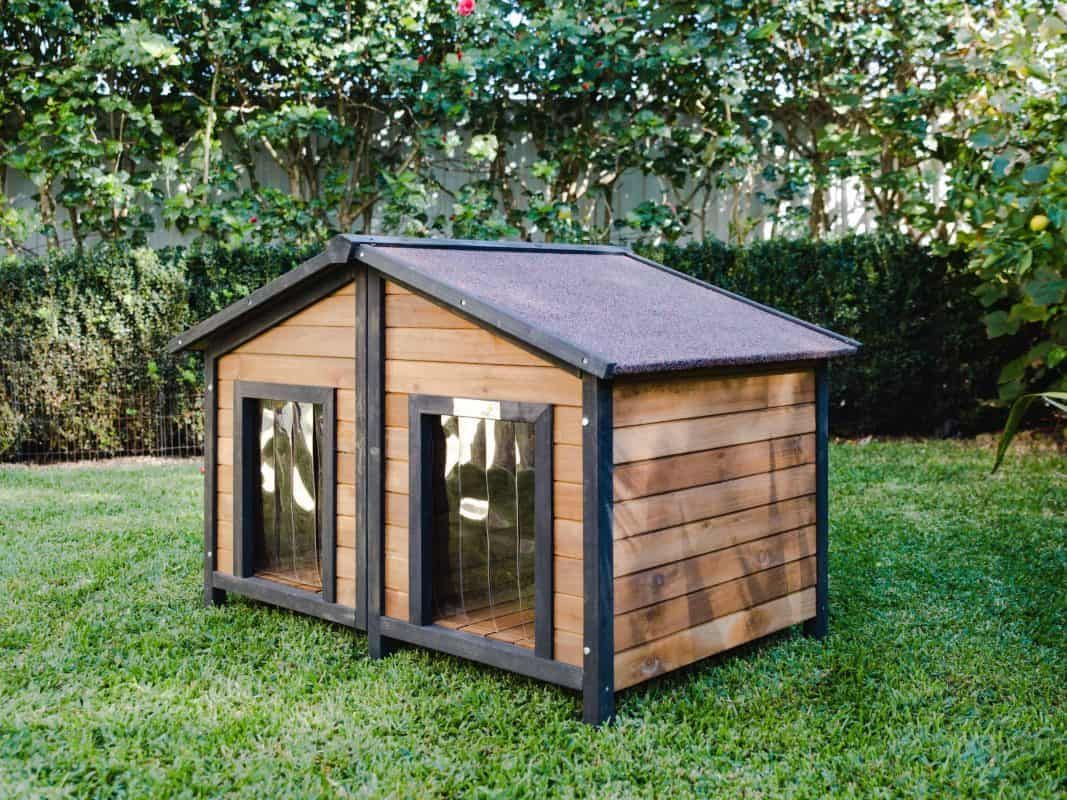 & Extra Outdoor Dog Kennels
