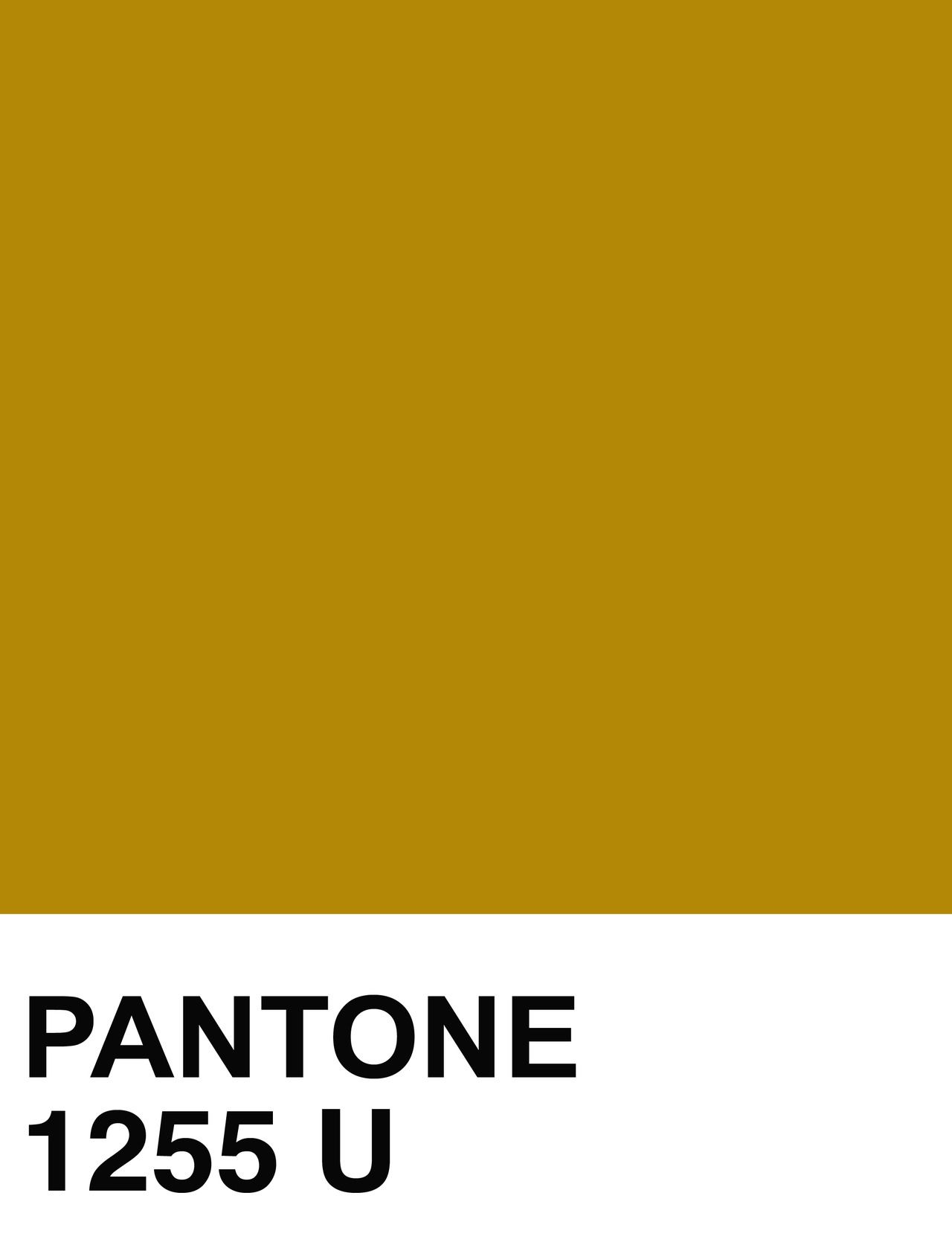 Electrikmuse fall colors design pinterest pantone and electrikmuse fall colors geenschuldenfo Gallery