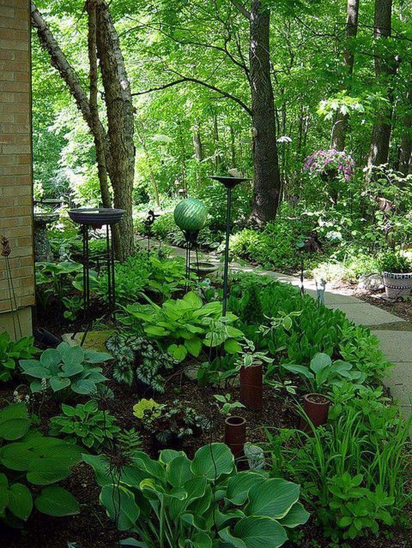 Pin By Eva Roswell On Gardening Shade Garden Design Shade Garden Woodland Garden