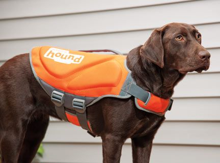 Dog Life Vest - Gifts for pet lovers, gifts for Labrador Retriever parents, Labrador Retriever gifts, Christmas gifts for Labrador Retriever lovers, gifts for dog lovers #labradorretriever