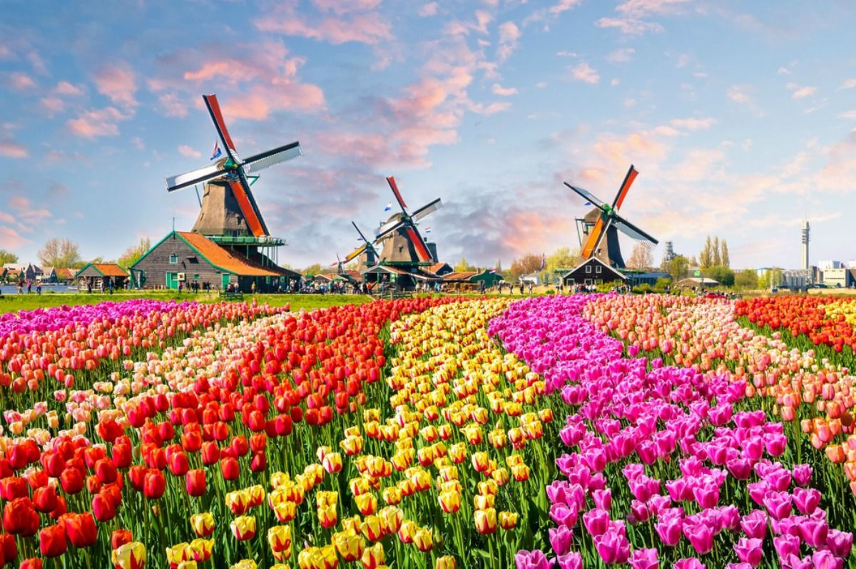The Keukenhof Park Lisse Town Holland Day trips from
