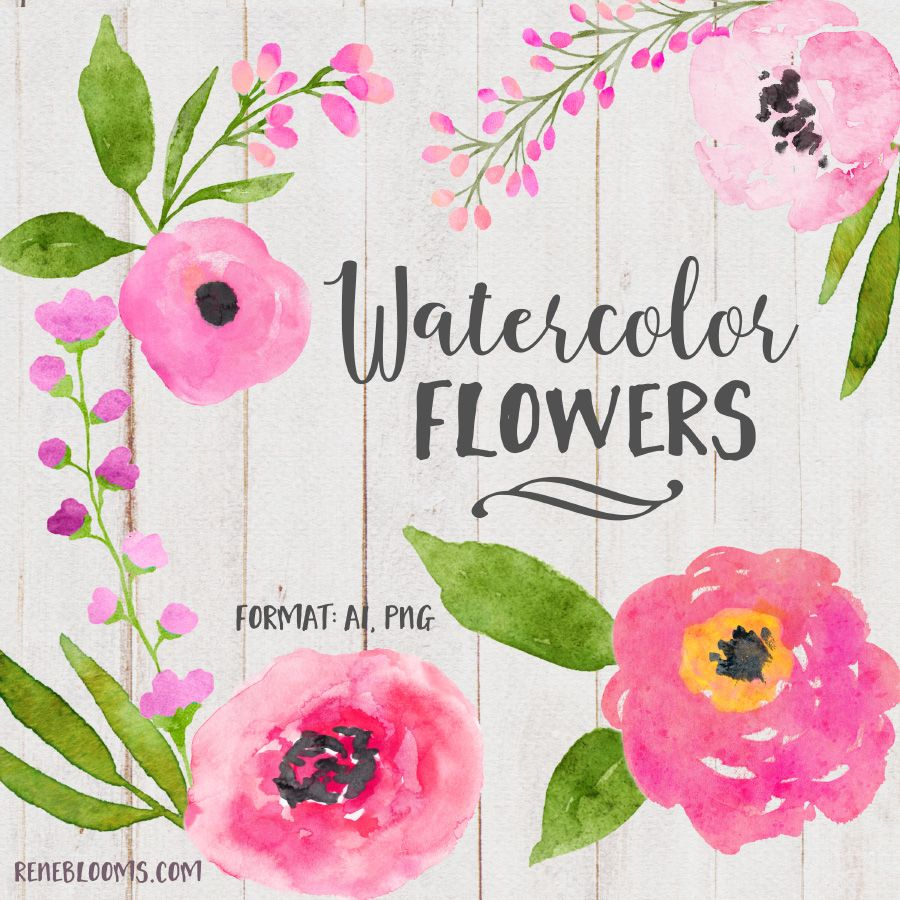 Free Pink Roses Watercolor Elements Free Watercolor Flowers