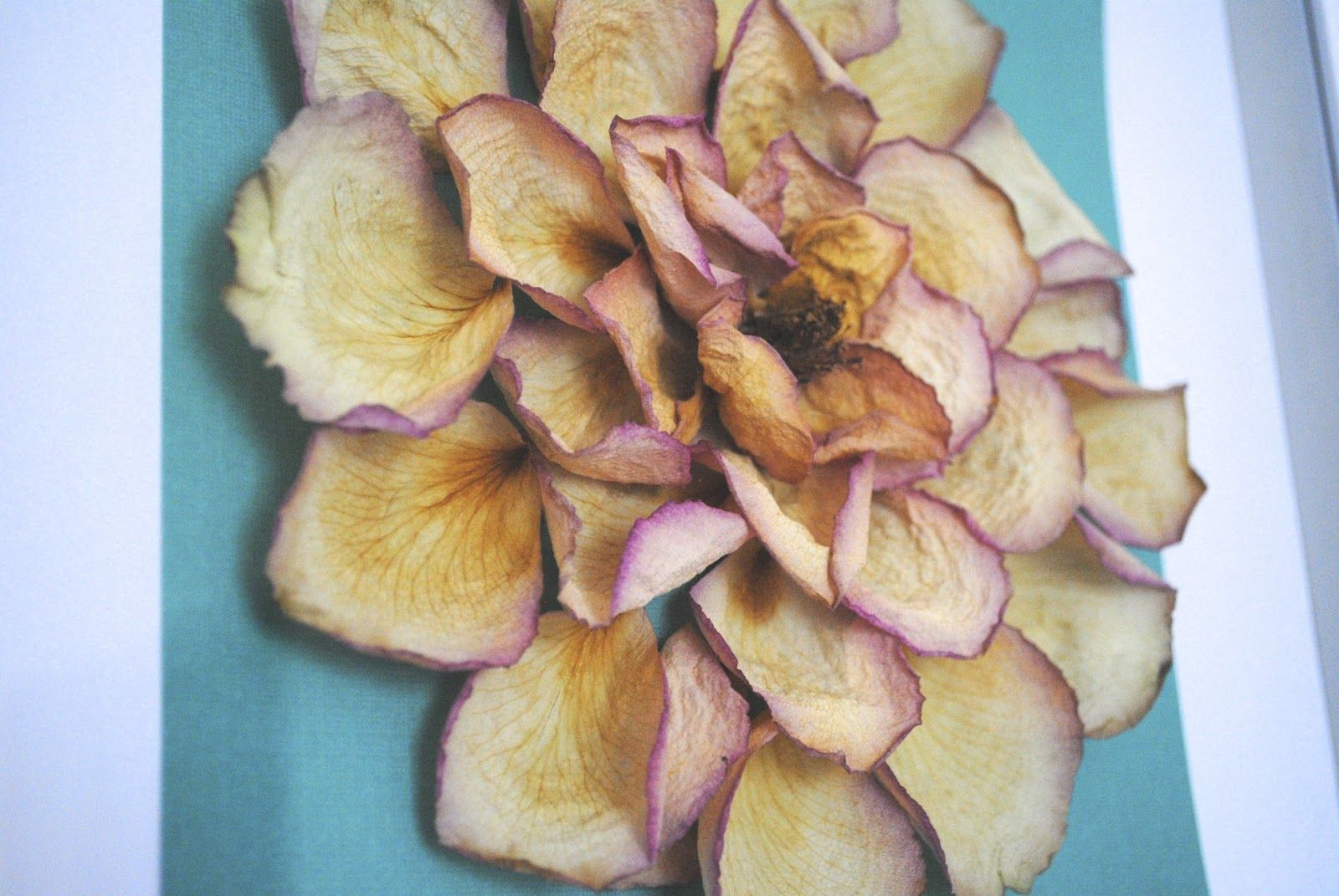 Awesome Artwork To Create Out Of Dried Roses Rose Petals Craft