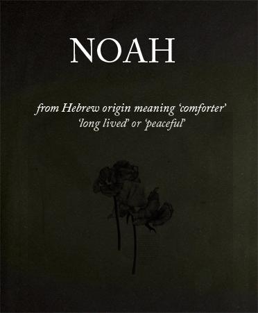 Más de 25 ideas increíbles sobre Noah name en Pinterest ...