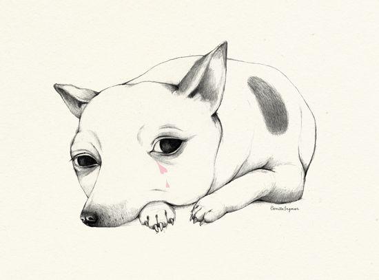 Camilla Engman #illustration #dog