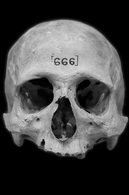 Pin von Yan Thill auf God is dead | Skull, Skull art und ...