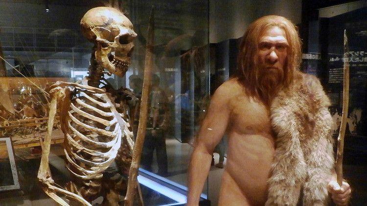 ¿A quién se parece más: a neandertales o denisovanos? Un mapamundi revela nuestra herencia genética - RT