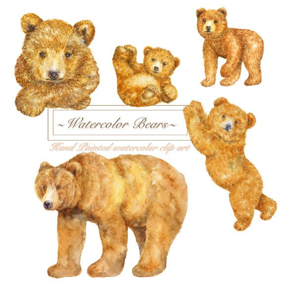 Watercolor Forest Brown Bears Clipart Woodland Animal Clip Etsy In 2021 Bear Clipart Baby Bear Tattoo Clip Art