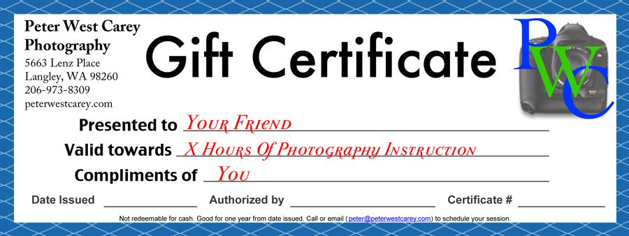 Gift certificate blank ideas for the house pinterest gift certificate blank yadclub Choice Image