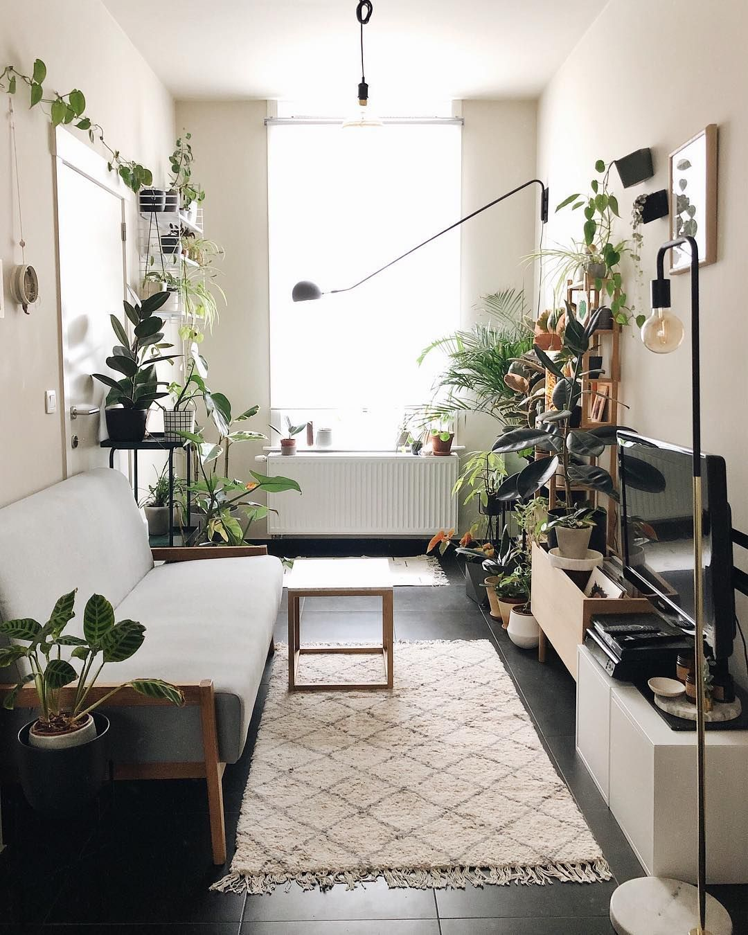 Simple Small Living Room Interiordesign:  Living Room Plants Decor Living Room Plants Ideas Living
