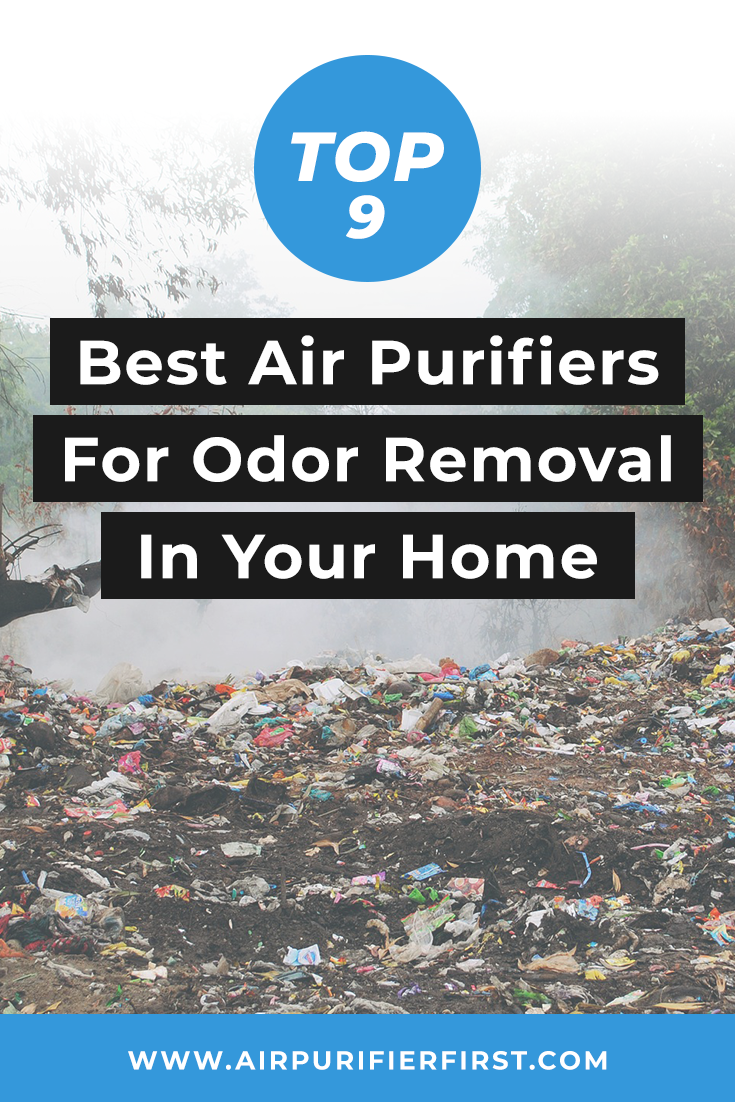 Choosing The Best Air Purifier For Odor Removal Air