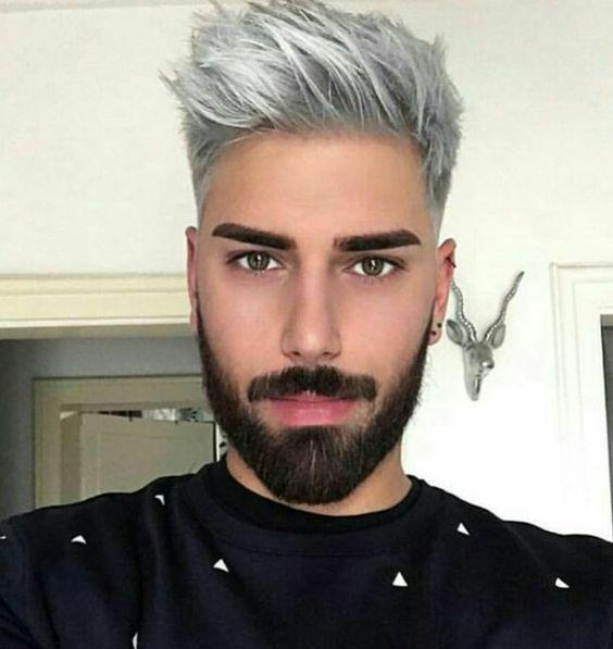 Hair dye grey mens Silver Hair