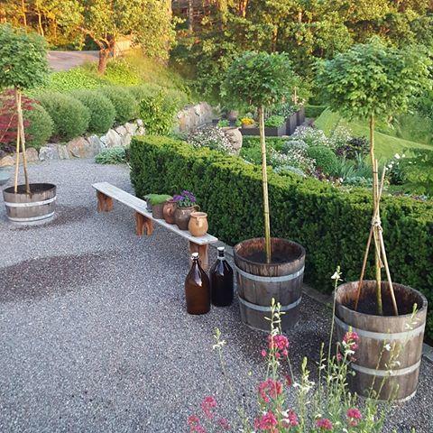 min trädgård vid sjön