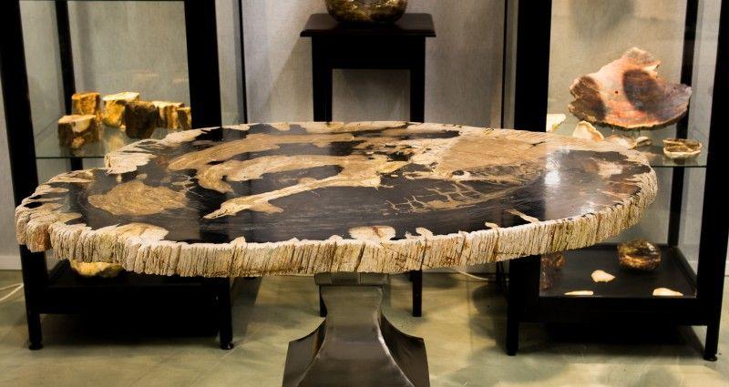 Interior petrified wood coffee table zeru table ideas