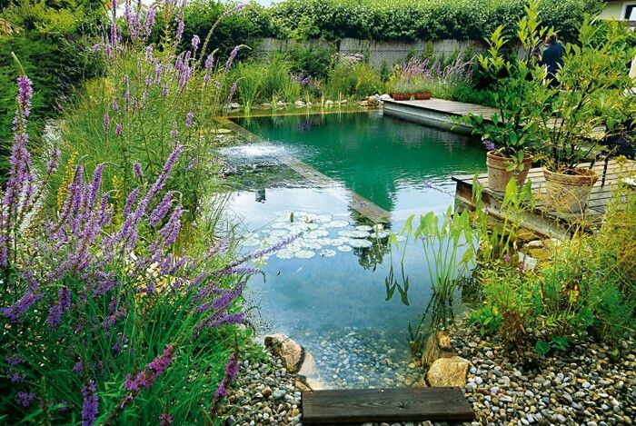 Natural swimming pool Home imporvement Pinterest Natural