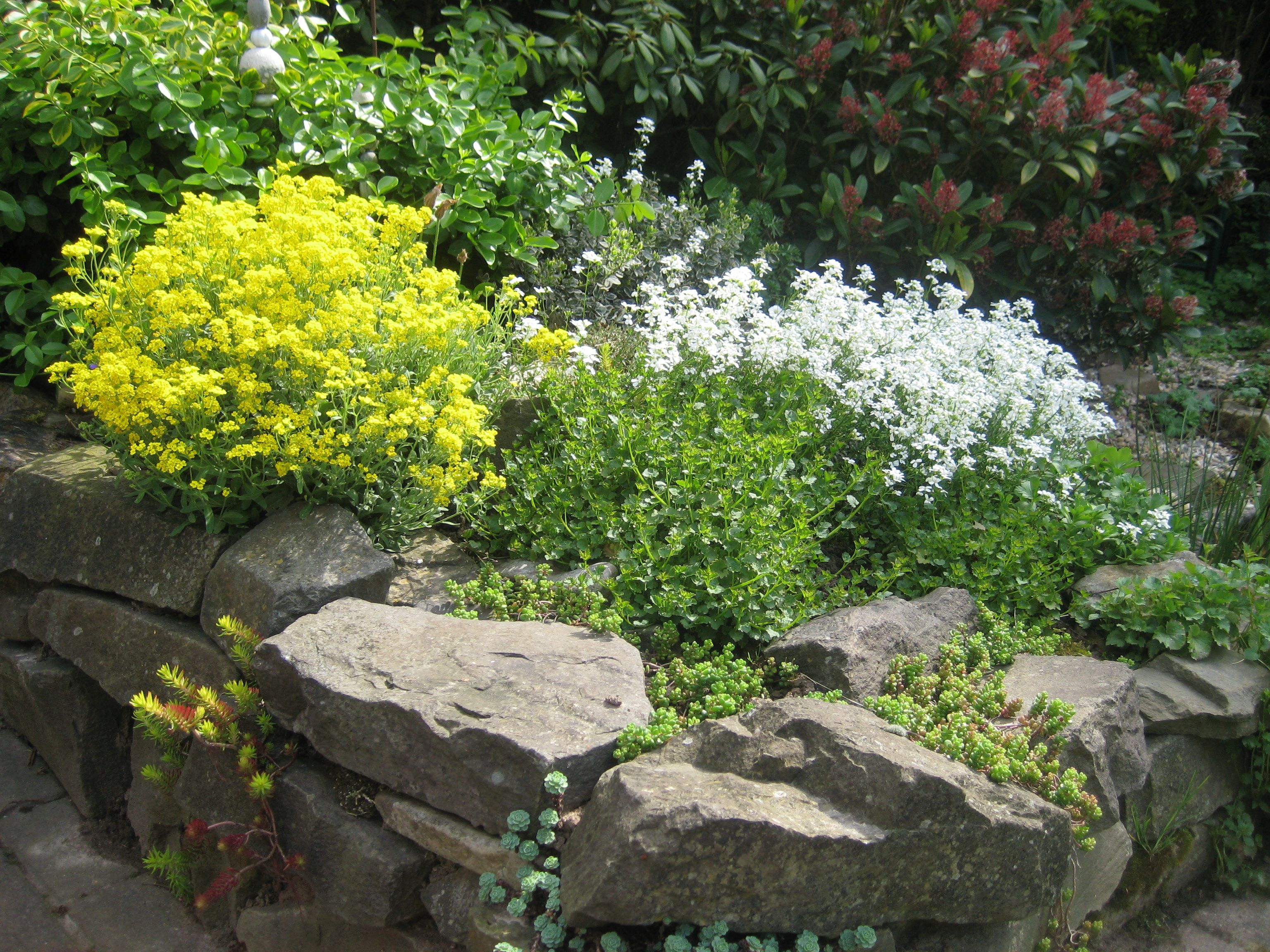 steingarten | garten | pinterest | garden ideas and gardens - Stein Garten Design