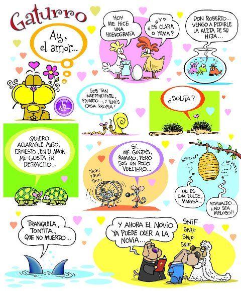 #gaturro