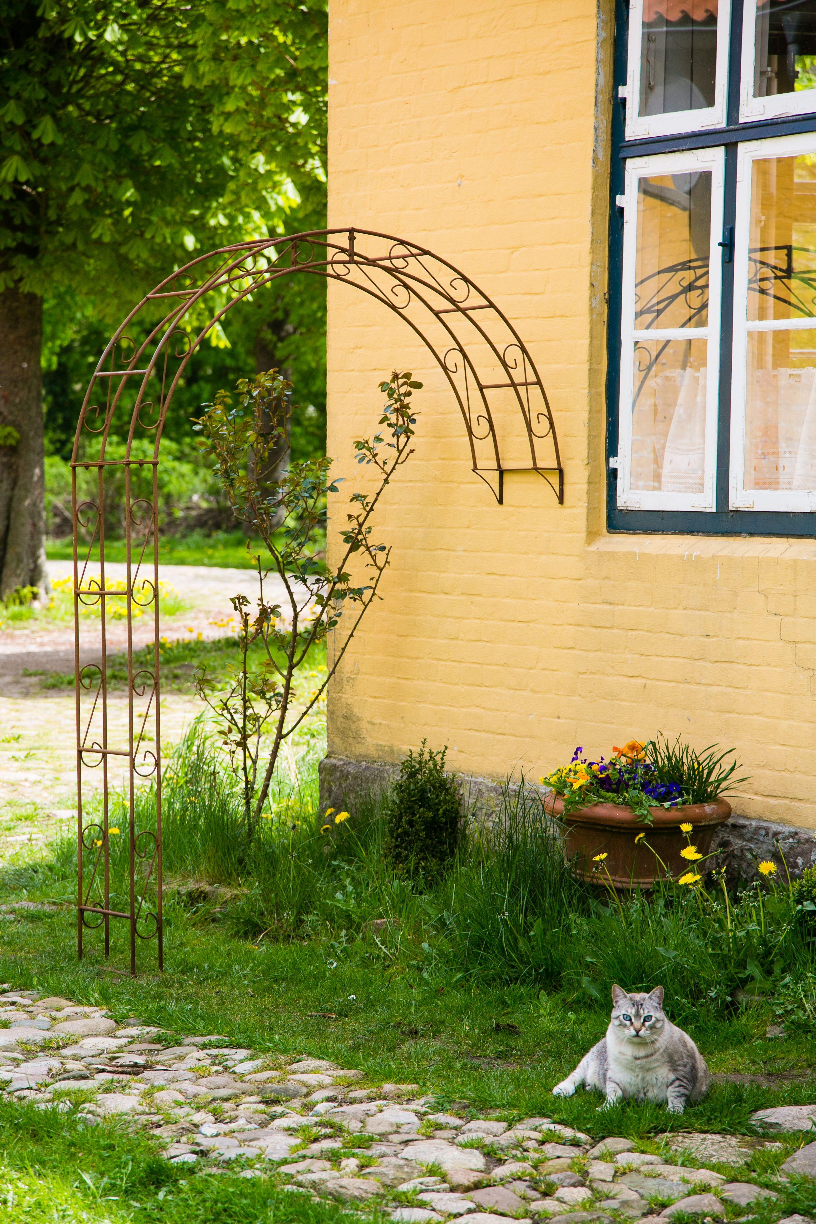 Kuheiga Com Ihr Online Shop Fur Gartenzubehor Wohnaccessoires Garten Gartendekoration Rosenbogen