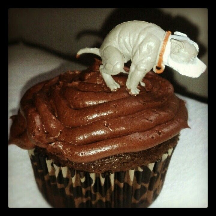 Best 25 Funny Cupcakes Ideas On Pinterest Cool Cupcakes