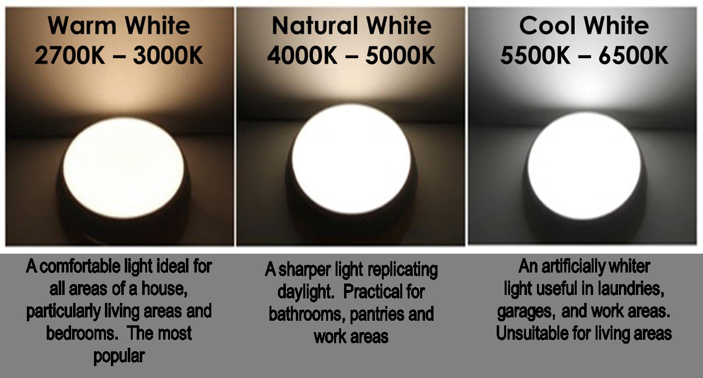 Pure White Vs Warm White Led Lights Google Search New