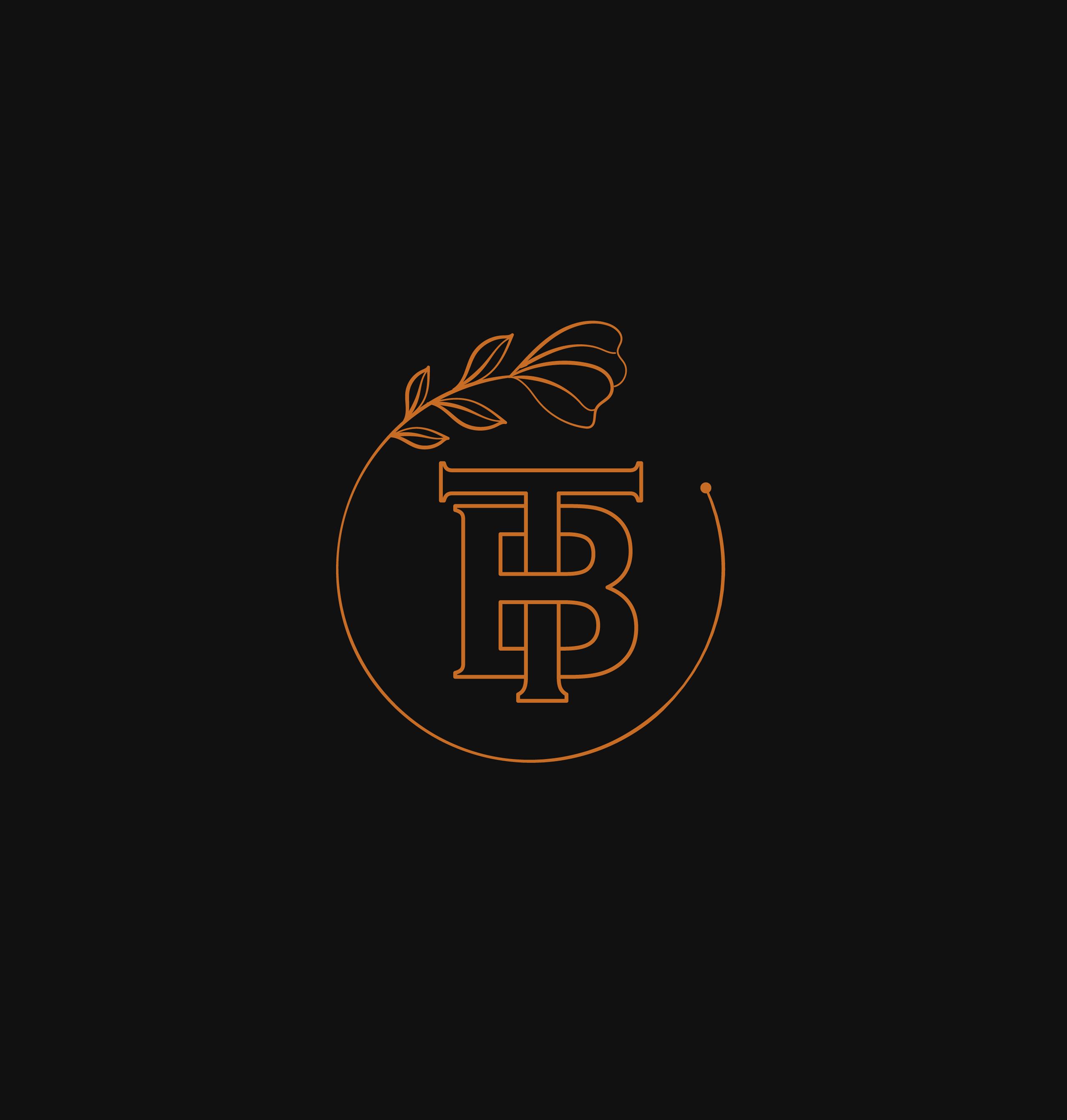 Bt Logo Letter Logo Logos Typography