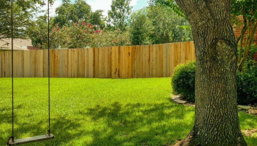 Pin On Gardening Ideas