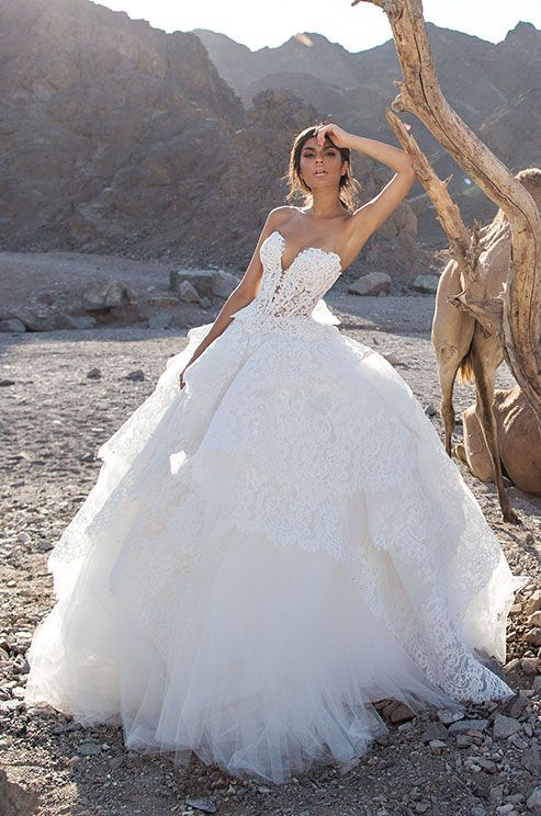 Love this strapless lace ball gown? Click to view the full Pnina ...