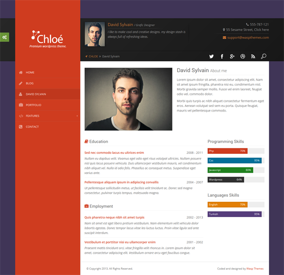 This resume and CV WordPress theme offers a responsive
