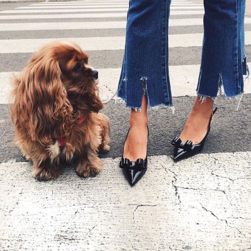 """foreverchampagneiglikes: """" D'awww! Can you deal with the cuteness?!  : @veronicaferraro • • • #shoes #heels #redvalentino #love #fashion #inspiration #detailsoftheday #style #stylish #love #photooftheday #beautiful #instafashion #styles #outfit..."""