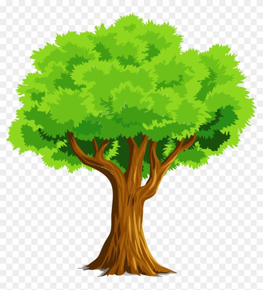 Google Image Result For Https Www Pngfind Com Pngs M 32 327941 Colorful Natural Tree Vector Clipart Tree Clipa Oak Tree Drawings Tree Drawing Tree Vector Png