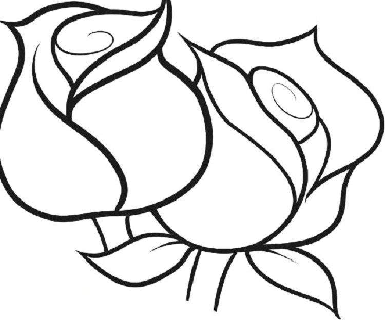 Printable Rose Coloring Pages For Kids Cool2bkids Rose Coloring Pages Flower Coloring Pages Skull Coloring Pages