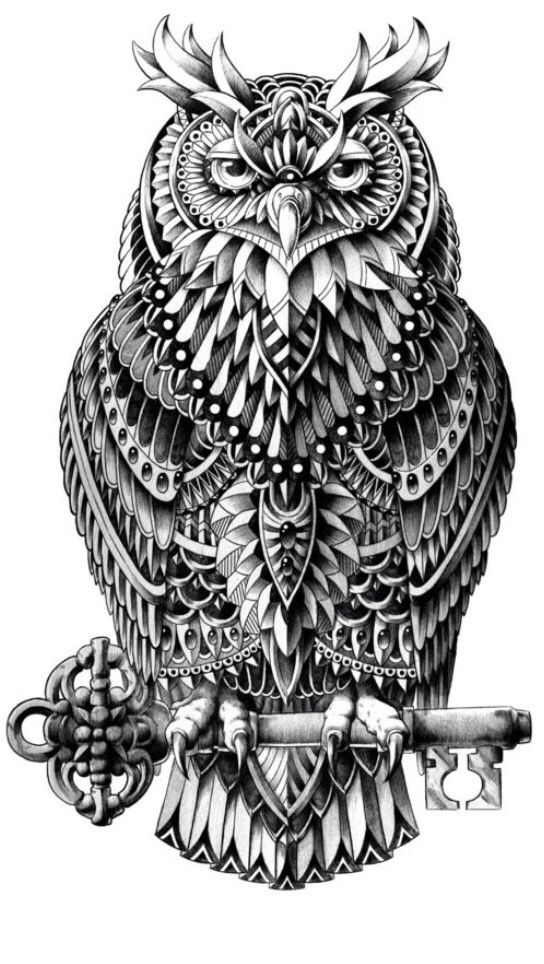 Dream half sleeve 😍 ️ | Owl art print, Owl tattoo design ...