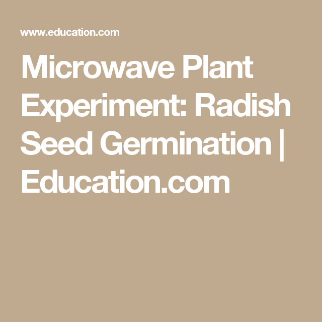 radiation on radish seeds