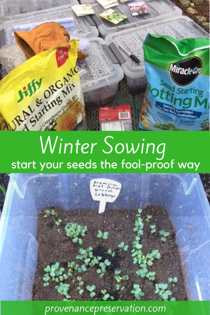 Winter sowing (winter planting): The economical &