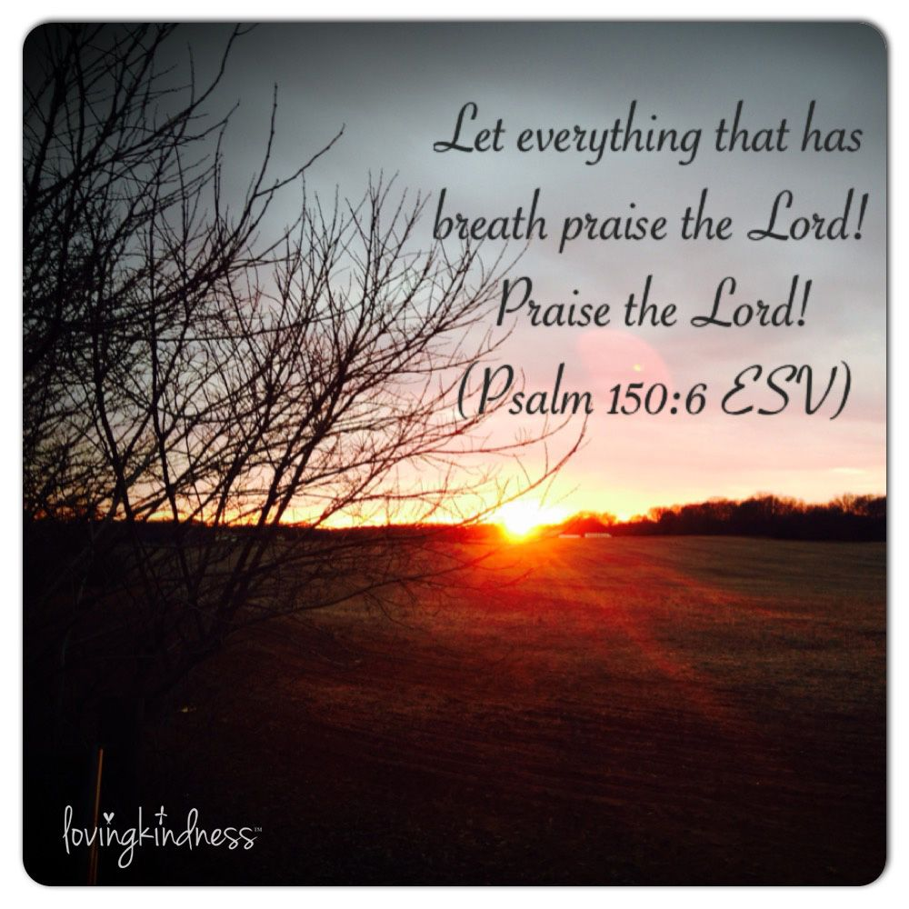 Loving Kindness Quotes Psalm 150.6  Lovingkindness Daily Positive Quotes & Photography