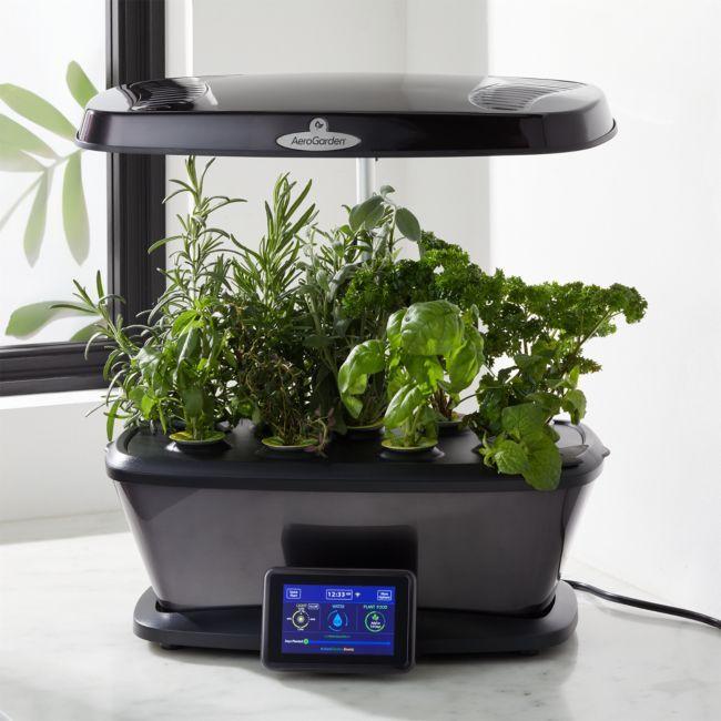Aerogarden Harvest Bounty Elite Platinum Indoor Garden 640 x 480