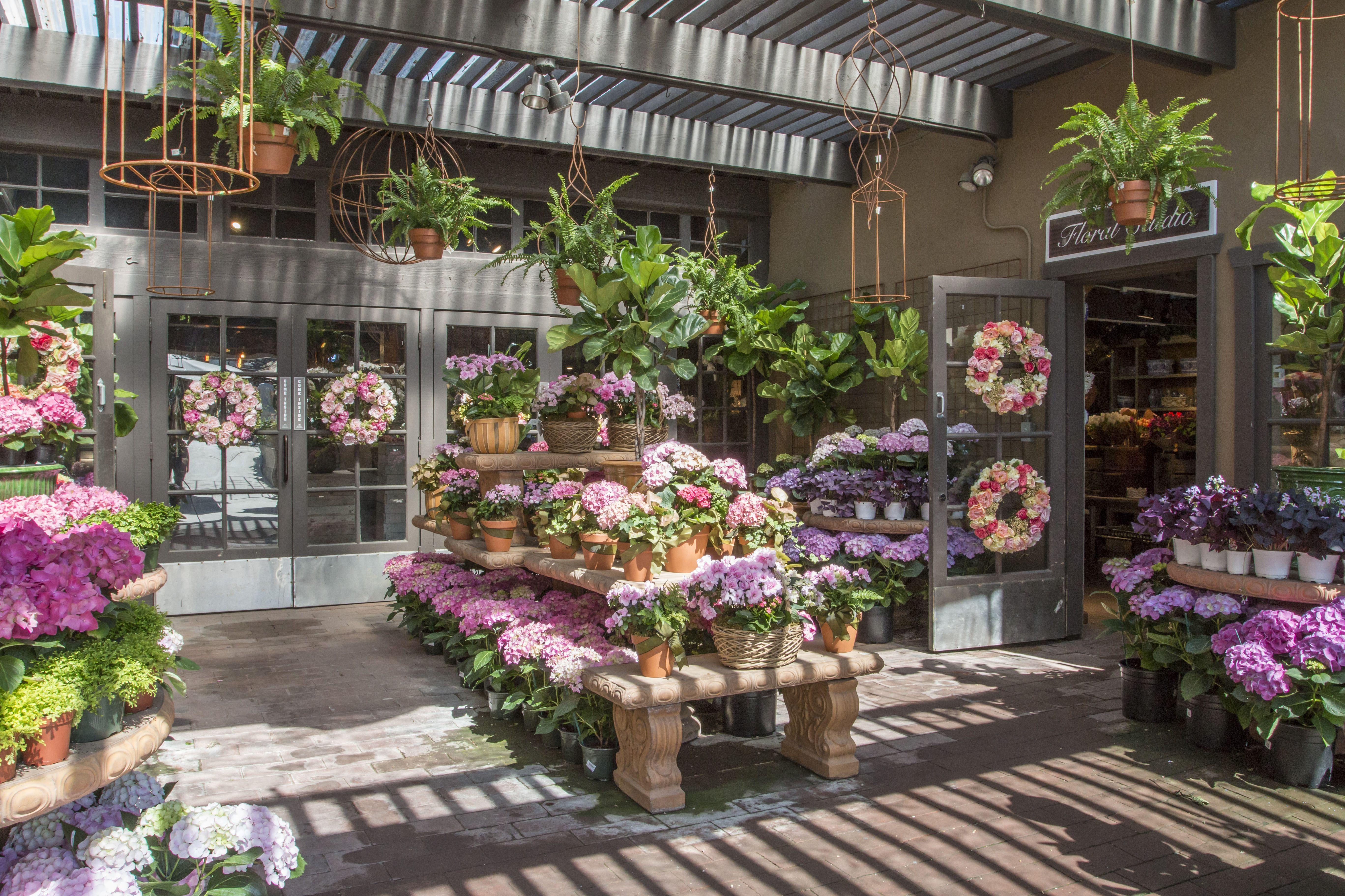 Spring 2016 Rogers gardens, Flower nursery, Garden styles