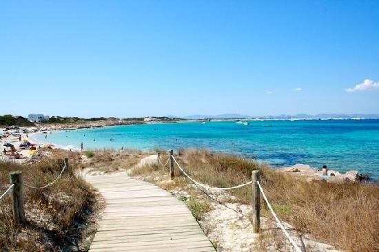 Playa de Ses Illetes: Vista desde Ses Illetes. Aguas cristalinas.  Playas de Formentera.