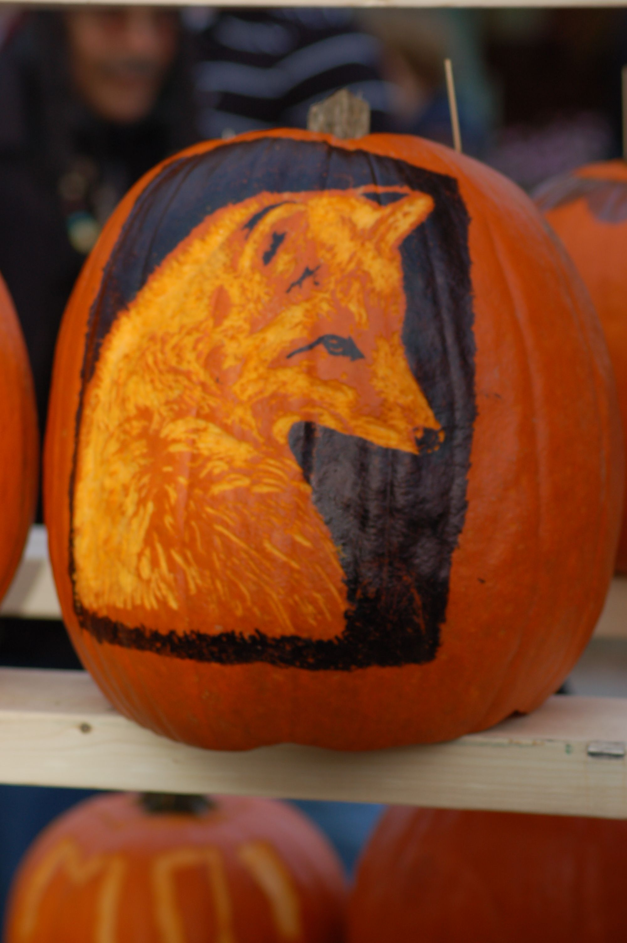 Inspiration in Pictures to Carve That Perfect Pumpkin | Holiday ...