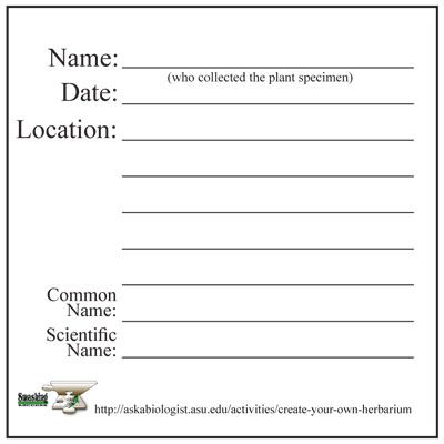 how to make an herbarium label   Step 7: Labelling your plants   ASU ...