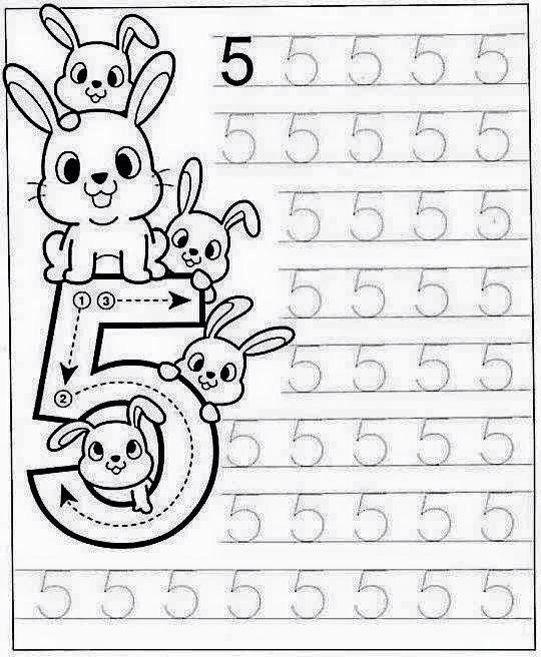 Düz Yazı Sayılar Çizgi Çalışmaları - Okul Öncesi Etkinlik ...