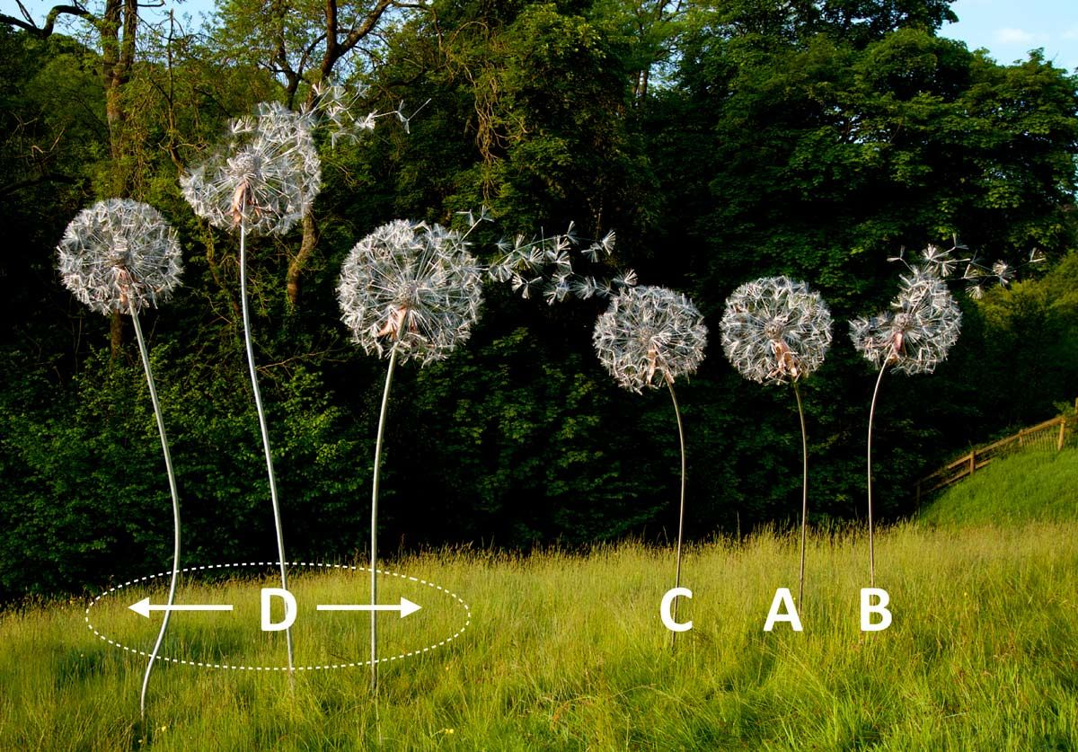 Dandelion cluster options Metal garden art, Chicken wire