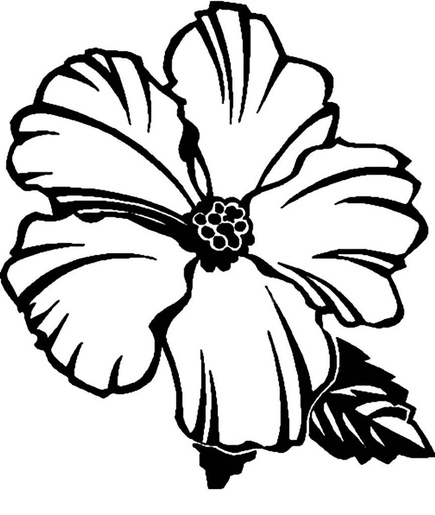 hibiscus coloring pages - Hawaiian Flower Coloring Pages