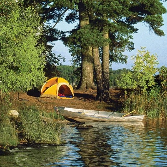 Who S Going Camping This Weekend Camping Shaver Lake Outdoor