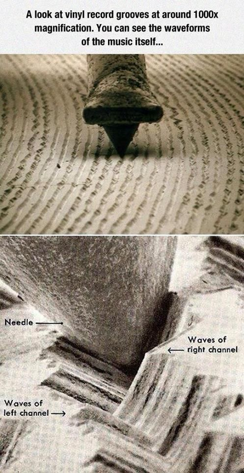 A Super Magnified Look At A Vinyl Record Cool Vinyl